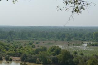 Aussicht auf den Mole National Park