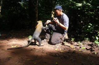 Mark und Affe
