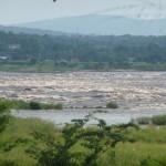 Kinshasa Alptraum