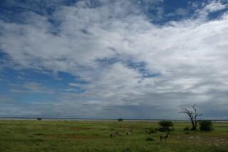 Etosha Nationalpark -  weiter Blick und tiefe Wolken, ein typsicher Anblick in Namibias Morden