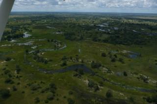 Okawango Delta aus der Luft