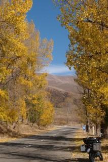 Herbstimmung 1