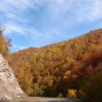 Herbstimmung 2
